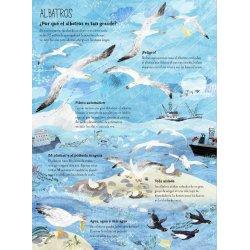 El gran libro de las aves editorial juventud