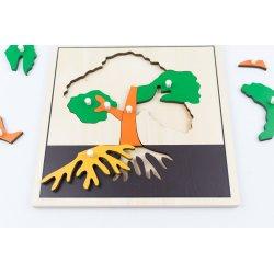 Puzle montessori para aprender las partes de un árbol
